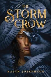 The Storm Crow.jpg